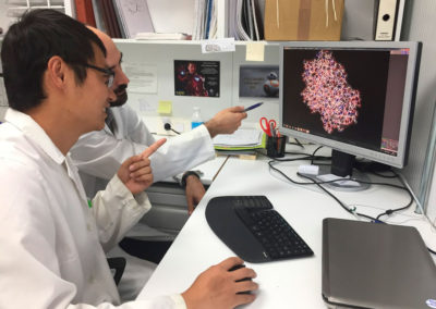 Jia Wei and Xavi analyzing protein structure to focus random mutagenesis, September 2017